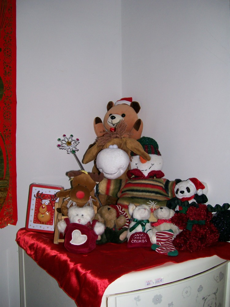 Christmas in the Foreign Teacher's Home (5/6)