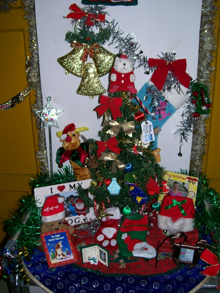 Christmas in the Foreign Teacher's Home (3/6)