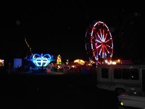 2013 fair pictures 008