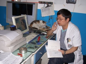 Dr. Qiu calling his friends, looking for a home for Xiao Lao-lao