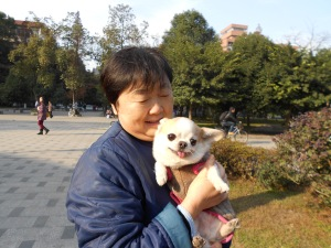 Our campus pet walkers really love their animals.