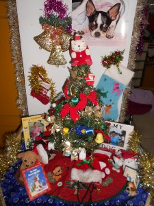 The pet Christmas tree is at the entrance and is a favorite for all animal lovers.