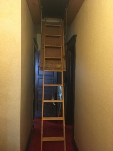I spent an entire day climbing up and down the ladder leading to the attic.